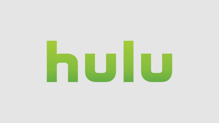 Updated List of Hulu Plus Channels (All Hulu Networks 2018)
