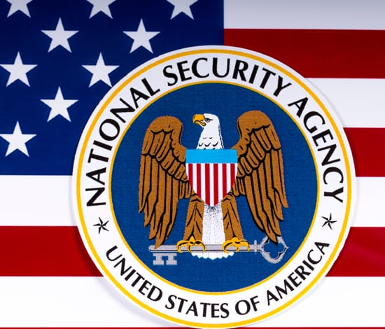 An image of the american flag where in front of it you have the official logo of the National Security Agency of the United States of America or short NSA